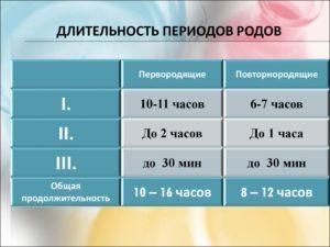 Сколько в среднем длятся роды у первородящих