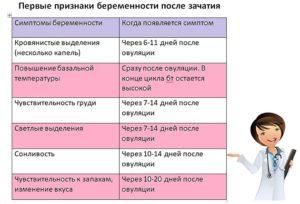 Можно ли ромашку при беременности на ранних сроках