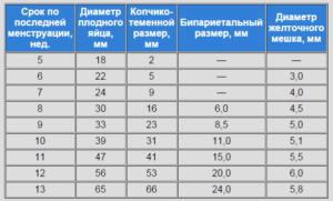 Таблица размеров плодного яйца