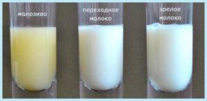 Чтобы быстрее появилось молоко после родов что делать