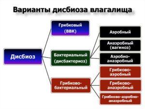 Анаэробный дисбиоз у женщин