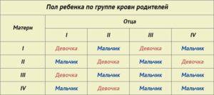 Калькулятор определения пола ребенка по обновлению крови родителей
