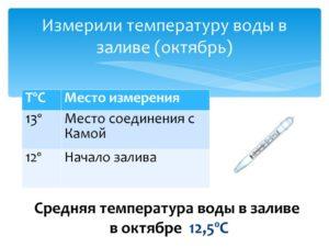 Температуру тела померить или измерить