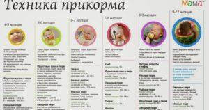 Как вводить в прикорм кашу в 5 месяцев
