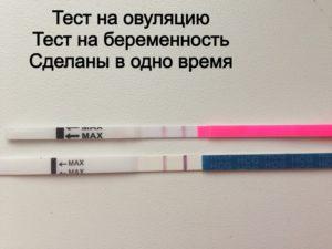 Есть ли овуляция при беременности на ранних сроках