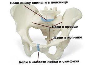 При беременности ломит лобковую кость