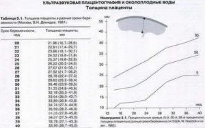 Толщина плаценты в 19 недель