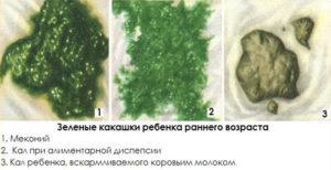 Во время беременности кал зеленый
