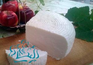Можно ли есть адыгейский сыр при грудном вскармливании