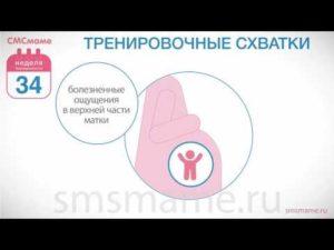 Тренировочные схватки 37 неделя беременности