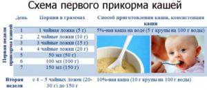 Со скольки месяцев можно давать молочную кашу грудничку