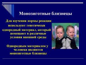 Монозиготные близнецы что это значит