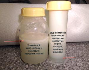 Чтобы грудное молоко было жирным что надо есть