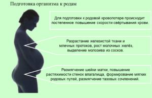 Чистка организма перед родами