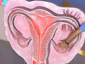 Матку тянет при беременности