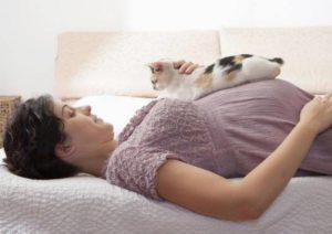 Можно ли лежать кошке на животе у беременной