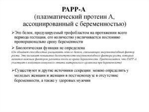 Papp белок при беременности