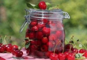 Можно ли компот из вишни при грудном вскармливании