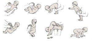 Со скольки месяцев начинает ползать малыш