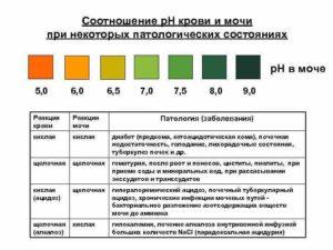 Ph мочи 6 5