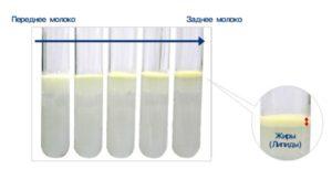 Анализ грудного молока на жирность
