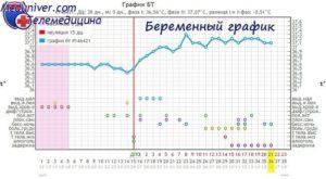 Первые недели беременности температура