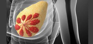Кормление грудью после рентгена