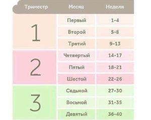 Триместры беременности по неделям таблица