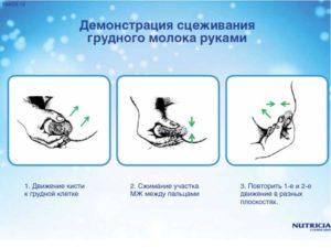 Как правильно сцеживать грудное молоко руками при застое