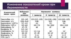 Биохимический анализ крови у беременных