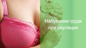 Набухшая грудь после овуляции