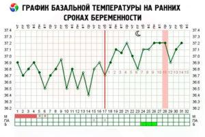 Температура при беременности 37 на поздних сроках беременности