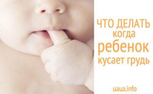 Ребенок кусает грудь что делать