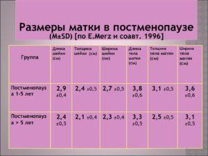Размеры матки в постменопаузе
