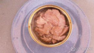 Можно ли консервированный тунец при грудном вскармливании