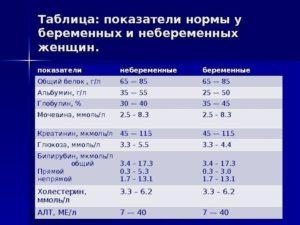 Белок у беременных в крови норма у женщин