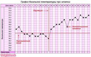 При зачатии температура тела
