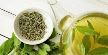 Зеленый чай при грудном вскармливании до 3 месяцев